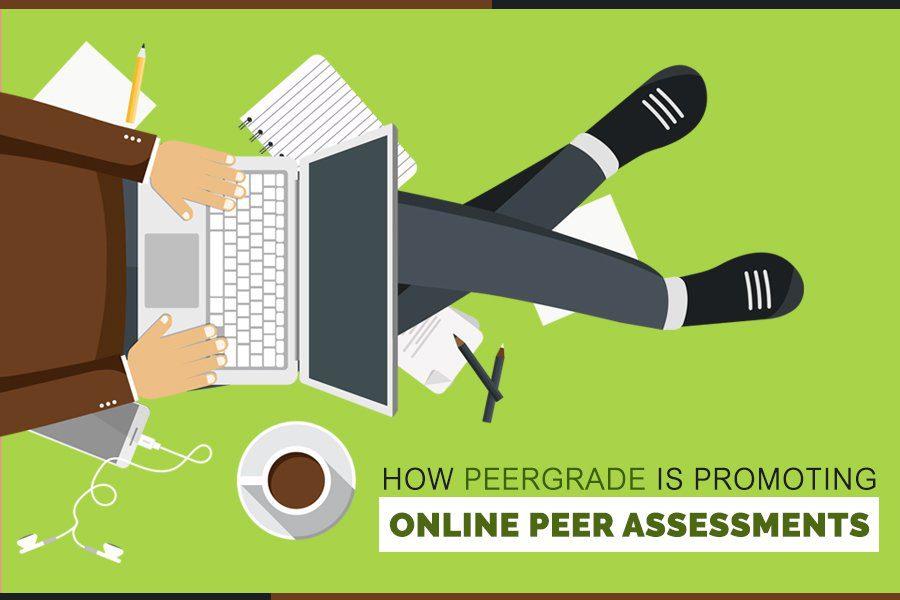 Promoting Online Peer Assessments